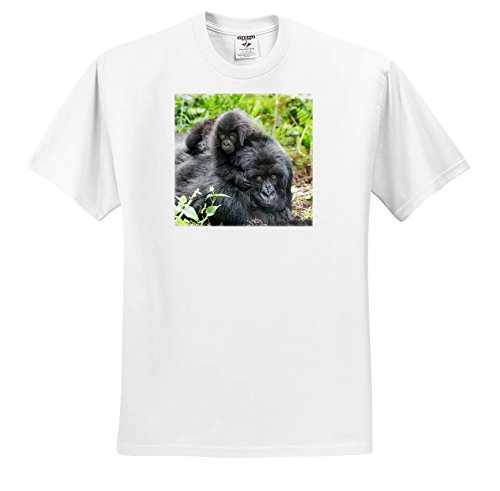 3dRose Danita Delimont - Baby Animals - Africa, Rwanda, Volcanoes NP. Mother Mountain Gorilla With Its Young. - T-Shirts - White Infant Lap-Shoulder Tee (24M) (TS_276533_69) by 3dRose