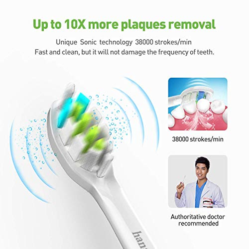 Sonic Electric Toothbrush USB Rechargeable Toothbrush Soft Bristles Oral Care Gum Clean Whiten Adult Toothbrush 2 Replacement Brush Heads 4 Modes with Automatic Timer IPX7 Waterproof Pink