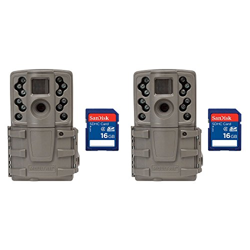 frared Mini Hunting Trail Camera, 2 Pack + 16 GB SD Cards ()