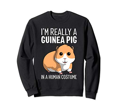 I'm Really A Guinea Pig In A Human Costume Halloween Funny Sweatshirt