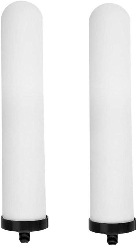 Zixin 10-Pulgadas Filtro Cartucho de cerámica Lavable Activado Sistema de Ducha de carbón Universal purificador de Agua de reemplazo Baño: Amazon.es: Hogar