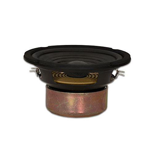 Goldwood Sound Dual Voice Coil 6.5