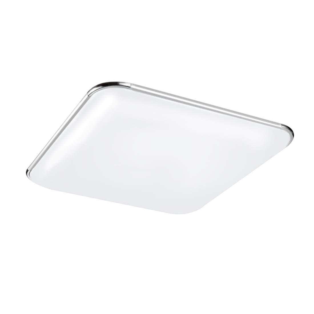 LED Ceiling Lights 12W 12-inch Flush Mount Lighting 6000K- 6500K Daylight White for Living Room Hallway Office Kitchen 3S3030LY