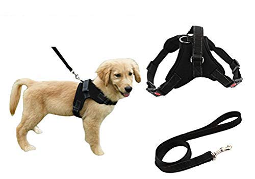 (Heavy Duty Adjustable Pet Puppy Dog Safety Harness with Leash Lead Set Reflective No-Pull Breathable Padded Dog Leash Collar Chest Harness Vest with Handle for Small Medium Large Dogs Training Walking)