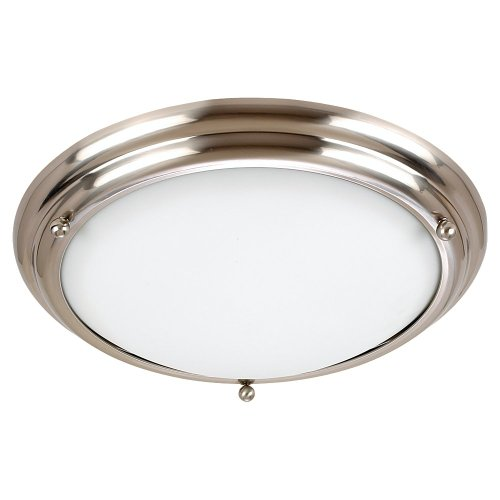 - Sea Gull Lighting 79130BLE98 Ceiling Light