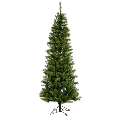 Vickerman 75' Salem Pencil Pine Artificial Christmas Tree with 350 Clear - Clear 350 Tips Lights