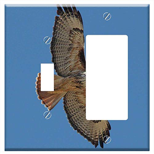 1-Toggle 1-Rocker/GFCI Combination Wall Plate Cover - Red Tailed Hawk Bird Raptor Wildlife Flying H