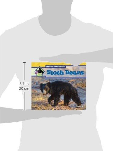 Sloth Bears (Asian Animals)