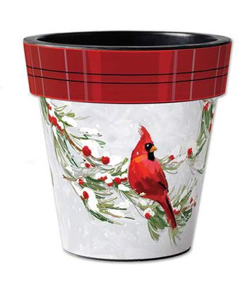 Snowy Cardinal 15