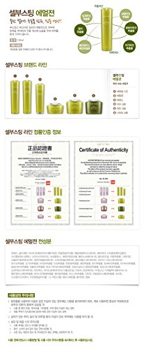 NATURE REPUBLIC Cell Boosting Watery Cream 55ml For Skin revitalizing Elasticity Clarity Vitality