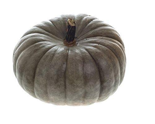 10 Jarrahdale Blue Pumpkin Seeds -