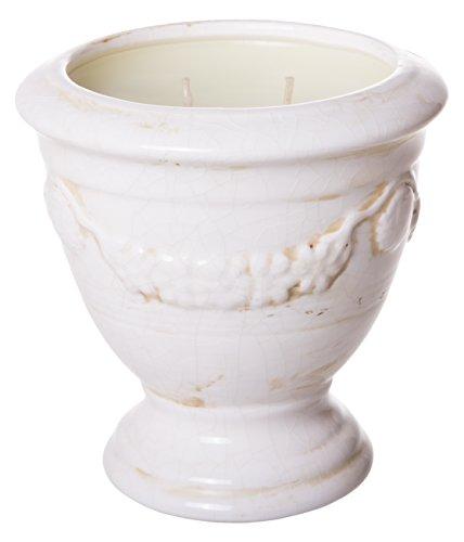 (Nouvelle Paperwhite & Honey, Designer Fragrance Candles, French Signature Urn, Ivory Cream Crackle, Large 5-inch, 24 oz)