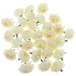 BROSCO 30Pcs Artificial Silk Camellia Flower Heads Bulk Wedding Floral Wall Supplies | Color - Cream 116