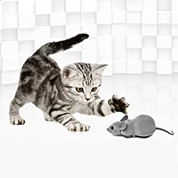 PAWZ Road Cat Toys Bluetooth Remote Control Electronic Rat Mouse Toy for Cats and Small Dogs