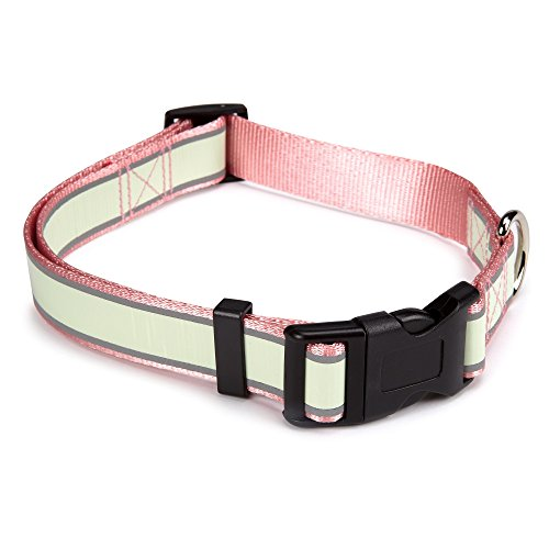 "Casual Canine Glow Nylon Dog Collar, Fits Necks 10"" to 16"", Pink"