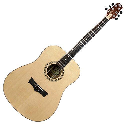 Peavey DW-2 Acoustic