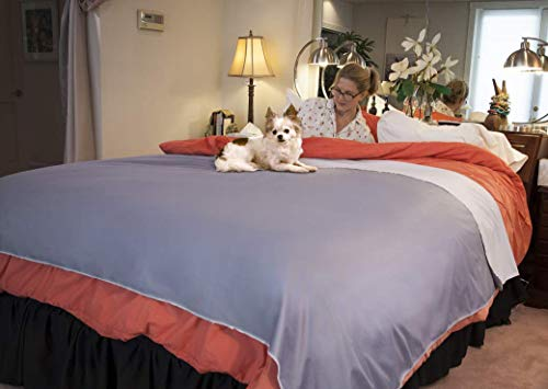 Twin Bed Sideline Comforter - Silly Legacy Reversible Waterproof Protective Cover or Liner for Bed or Couch, for Dogs and Cats (Queen 82 x 78, Gray)