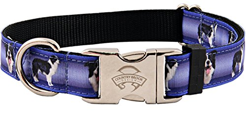 Border Collie Costumes (Country Brook Design Premium Border Collie Ribbon Dog Collar - Large)