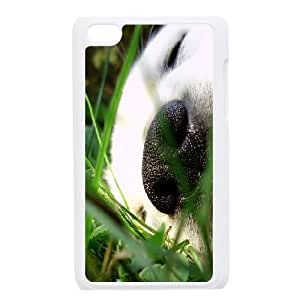 Cases For Ipod Touch 4, Sleeping Puppy Cases For Ipod Touch 4, Tyquin White