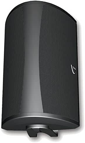 Definitive Technology AW 6500 Outdoor Speaker (Single, Black)