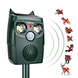 Ultrasonic Pest Repeller Birds - Best Reviews Guide