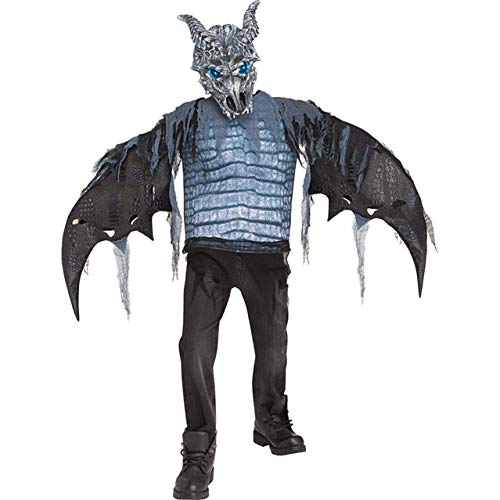 Fun World Ice Dragon Child Costume, Multicolor,