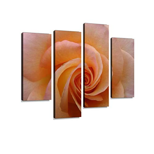 Peach Rose in Close-up Canvas Wall Art Hanging Paintings Modern Artwork Abstract Picture Prints Home Decoration Gift Unique Designed Framed 4 Panel