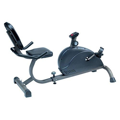 Phoenix 99608 Magnetic Recumbent Exercise Bike Phoenix Health and Fitness Inc