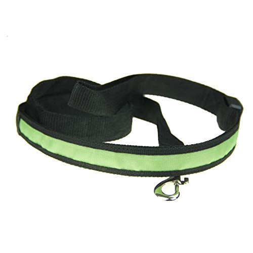 dfyjrikjop LuzLED detracción para Mascotas Cuerda de tracción para Mascotas Correa de tracción Luminosa para Perros Cuerda de tracciónVerde2.5 * 120 cm