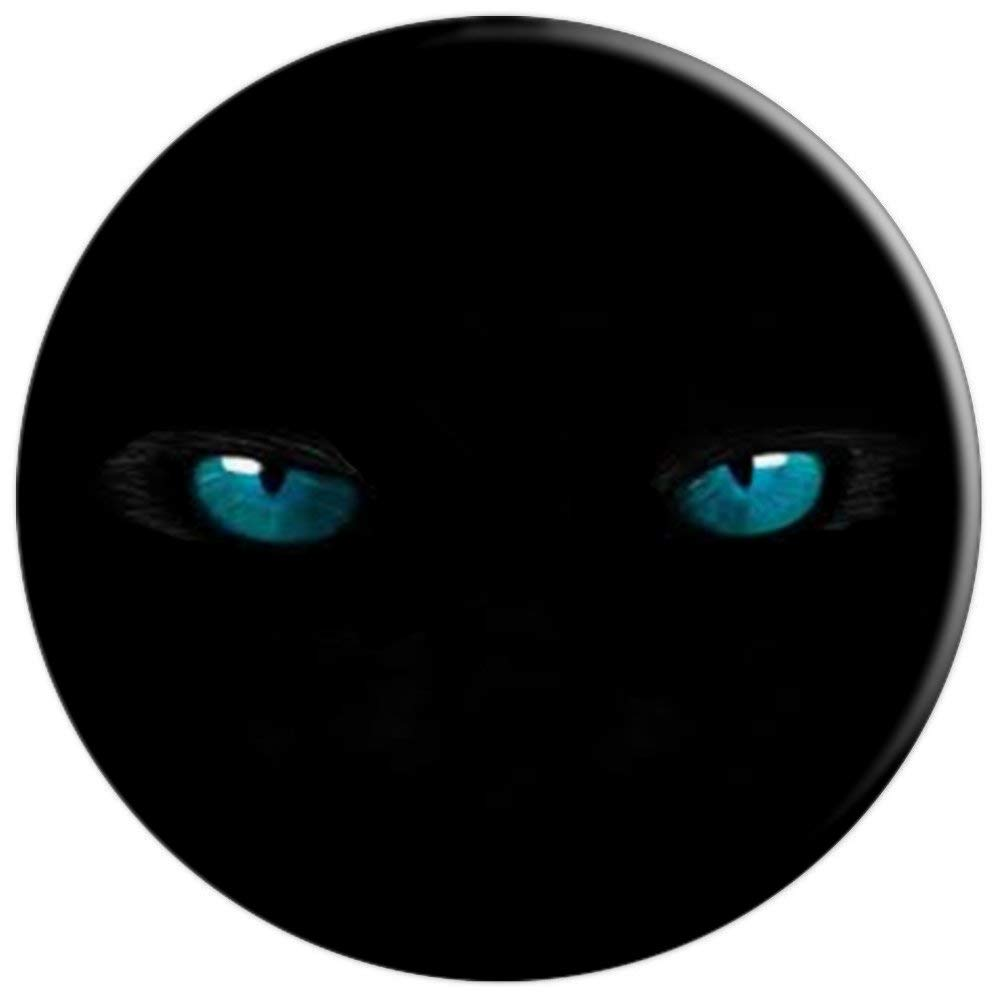Amazon.com: blue eyes cat ojos gato azules - PopSockets Grip and Stand for Phones and Tablets: Cell Phones & Accessories