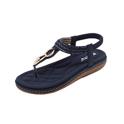 UOKNICE SANDALS New Summer Women Sandals Flat Casual Metal Shoes Soft Rhinestone Thong Sandals(Blue-2, CN41(US 8)) -