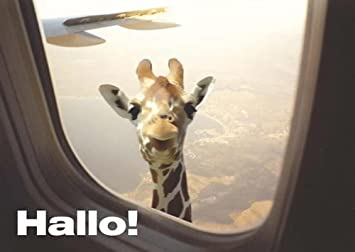 Postkarte A6 Lustig Von Modern Times Hallo Giraffe