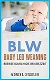 BLW-Baby Led Weaning: Breifrei durch die Beikostzeit mit leckeren Rezepten