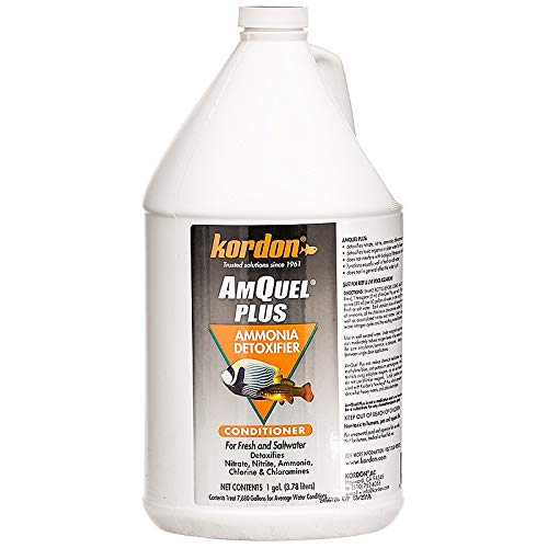 Kordon  #33462 Amquel Plus- Ammonia Detoxifier for Aquarium, 1-Gallon ONLY by Kordon