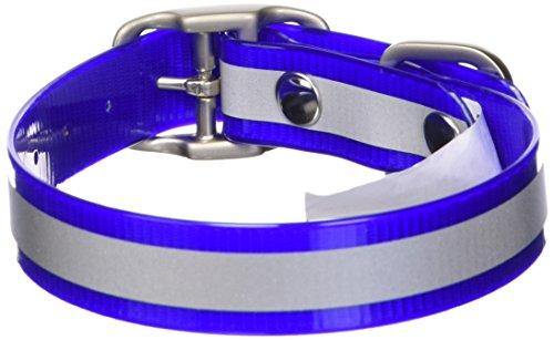 Dublin Dog 12.5-Inch to 17-Inch KOA Reflective Waterproof Dog Collar, Medium, Blue