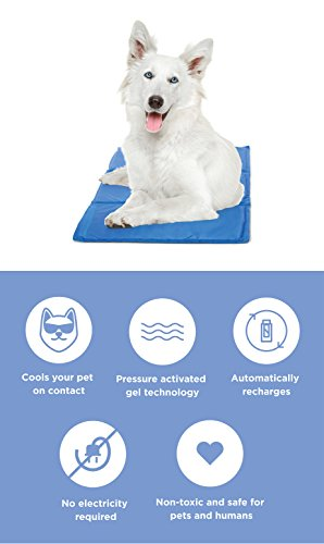 Buy pet cooling mat
