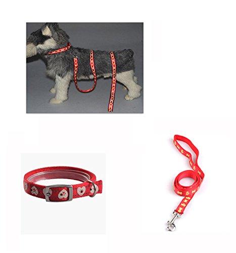 Glumes Night Reflective Double Adjustable Band Nylon Small Puppy Pet Dog Combo Collar Leash Harness or Leash Collar Set