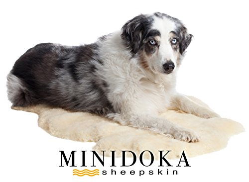 Minidoka-Sheepskin-Natural-New-Zealand-Lambskin-Pet-Rug-for-Dog-or-Cat-Soothing-Soft-Shorn-Wool-for-Ultimate-Comfort-by-Desert-Breeze-Distributing