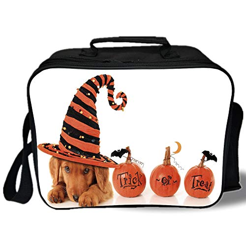 Halloween 3D Print Insulated Lunch Bag,Cute Puppy Wearing a Witch Hat Trick or Treat Little Bats Festive Funny,for Work/School/Picnic,Orange Black Brown