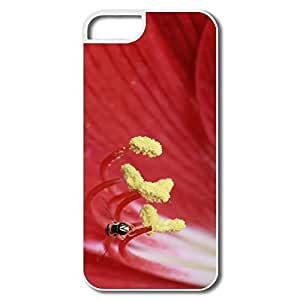 Cool Fly IPhone 5/5s Case For Birthday Gift