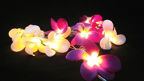 [GaanZaLive36 Magical Garden Handmade 20 Romantic Hawaiian Plumeria Frangipani Natural silk Flower Fairy String Lights Patio Wedding Party Vanity Kid Wall Lamp Floral Home Decor 3m] (Handmade Candy Costumes)