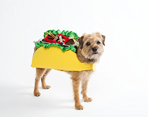 Taco halloween costume (taco costume medium)]()