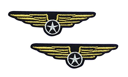 2 pieces Airforce Wings Iron On Patch Motif Applique Heraldic Insignia Decal 3.8 x 1 inches (9.5 x 2.5 cm)