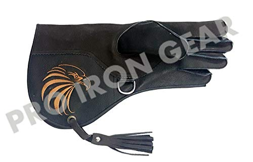 (PRO IRON GEAR Falconry Cowhide + Nubuck Leather Gloves with Embroidery Logo (L) 13 INCH)