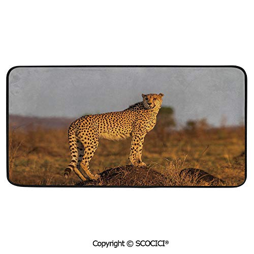 Rectangle Rugs for Bedside Fall Safety, Picnic, Art Project, Play Time, Crafts, Large Protective Mat, Thick Carpet,Safari,African Wild Animal Cheetah Standing on Termite Mound Savannah,39