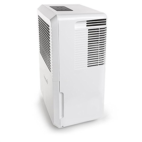 Buy humidifier for basement
