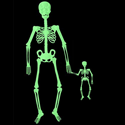 2PCS Halloween Hanging Luminous Skeleton Decorations - 60 Inch&13 Inch Full Body Glow-in-The-Dark Skeleton for Halloween Party Bar Wall Sticker Decorations Outdoor Yard Garden Hanging Ornaments