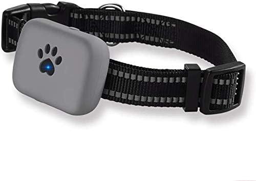 犬トラッカー活動や体育教師、ミニチュアロケータ防水防塵繰り返し失われた動物は、鍵、財布、携帯電話のグレーを使用します,グレー