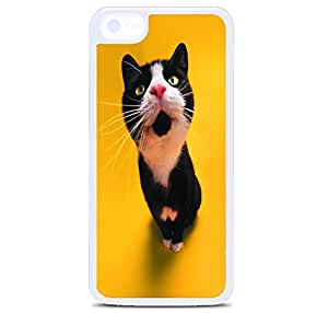 iPhone 5C Case Cover, Surprised Black Cat Polycarbonate Plastic Hardshell Case Back Cover for iPhone 5C White