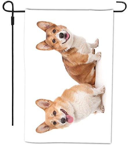 Rikki Knight Pembroke Welsh Corgi Dog Design Decorative H...